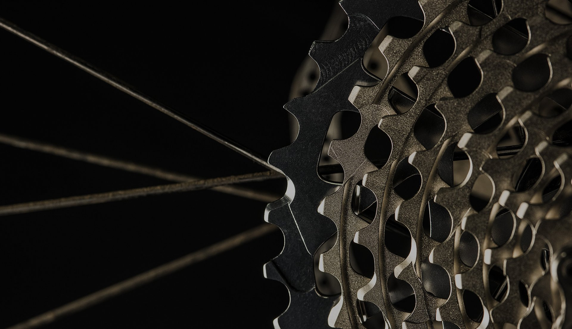 Les meilleures marques de vélo